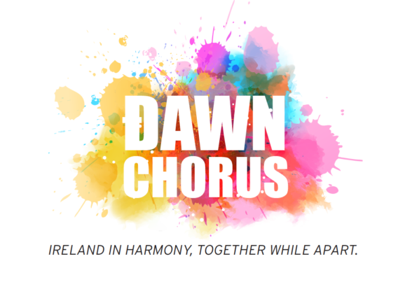 Dawn Chorus Ireland